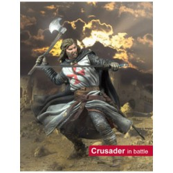 Crusader in Battle