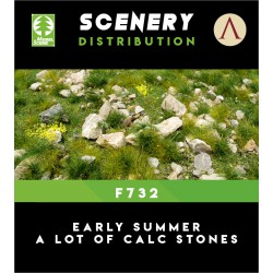EARLY SUMMER A LOT OF CALC STONES